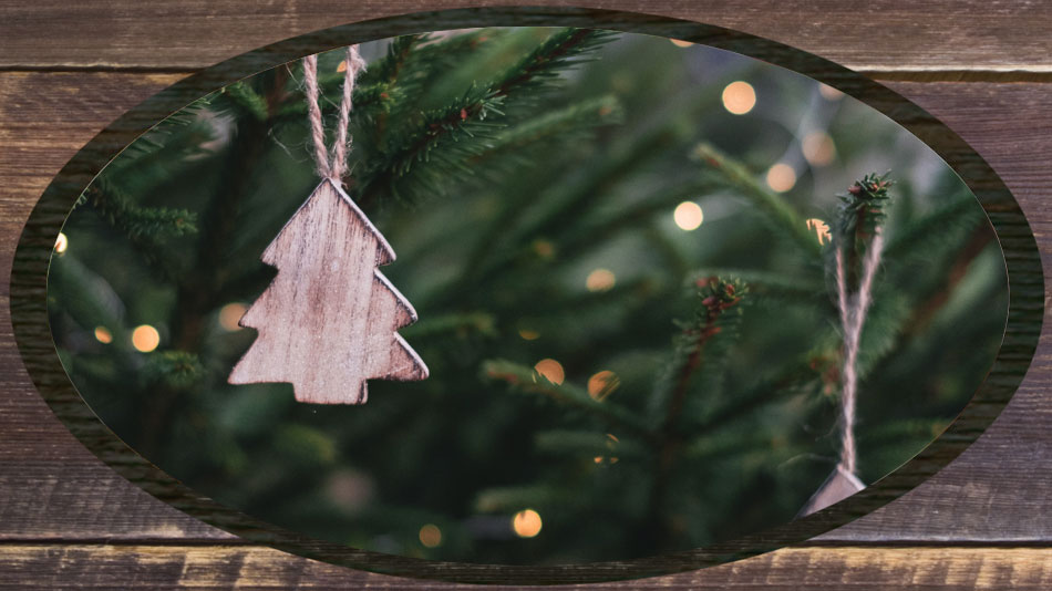 KY Proud Christmas Trees and Wreaths